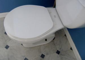 Leaky Toilet in Kanata, Ontario